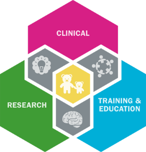 psychology infographic model of care, combining clinical, research, training and education pillars